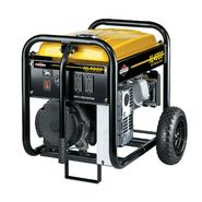 Briggs & Stratton 4000 Watt Portable Generator - Non CA at Craftsman.com