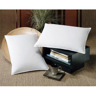 DOWNLITE 10/90 Decorative Pillow Insert Form Rectangle -Made in USA 012 x 024 at Sears.com