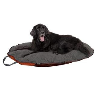 Dog Whisperer Folding Travel Dog Bed - Size: Medium-For Dog up to 45 lbs at Sears.com