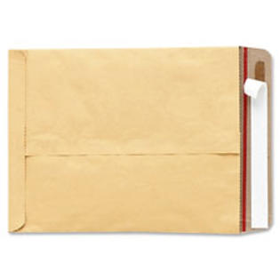 SPR Product By Quality Park Produs - Padded Mailer No. 6 w/Redi rip 12-1/2&amp;#34;x17-1/4&amp;#34; 5 Kft at Sears.com