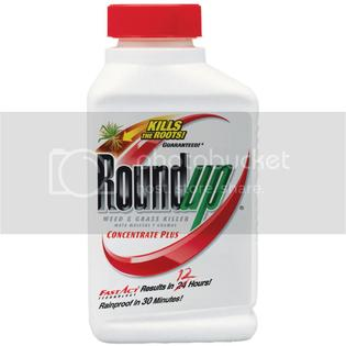 The Scotts Company Scotts Roundup 16oz 25% Conc Weed &amp; Grass Killer Plus at Sears.com