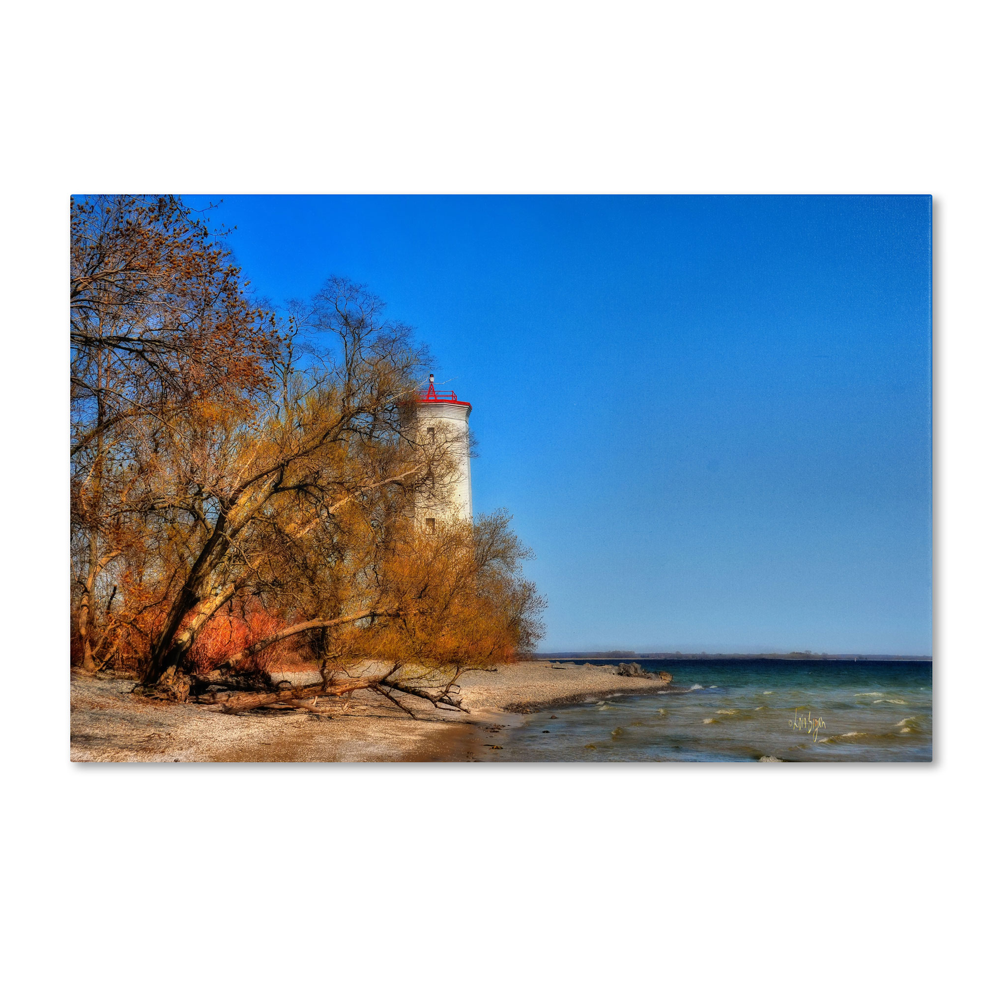 Trademark Global Lois Bryan 'The Lighthouse at Presquile' Canvas Art