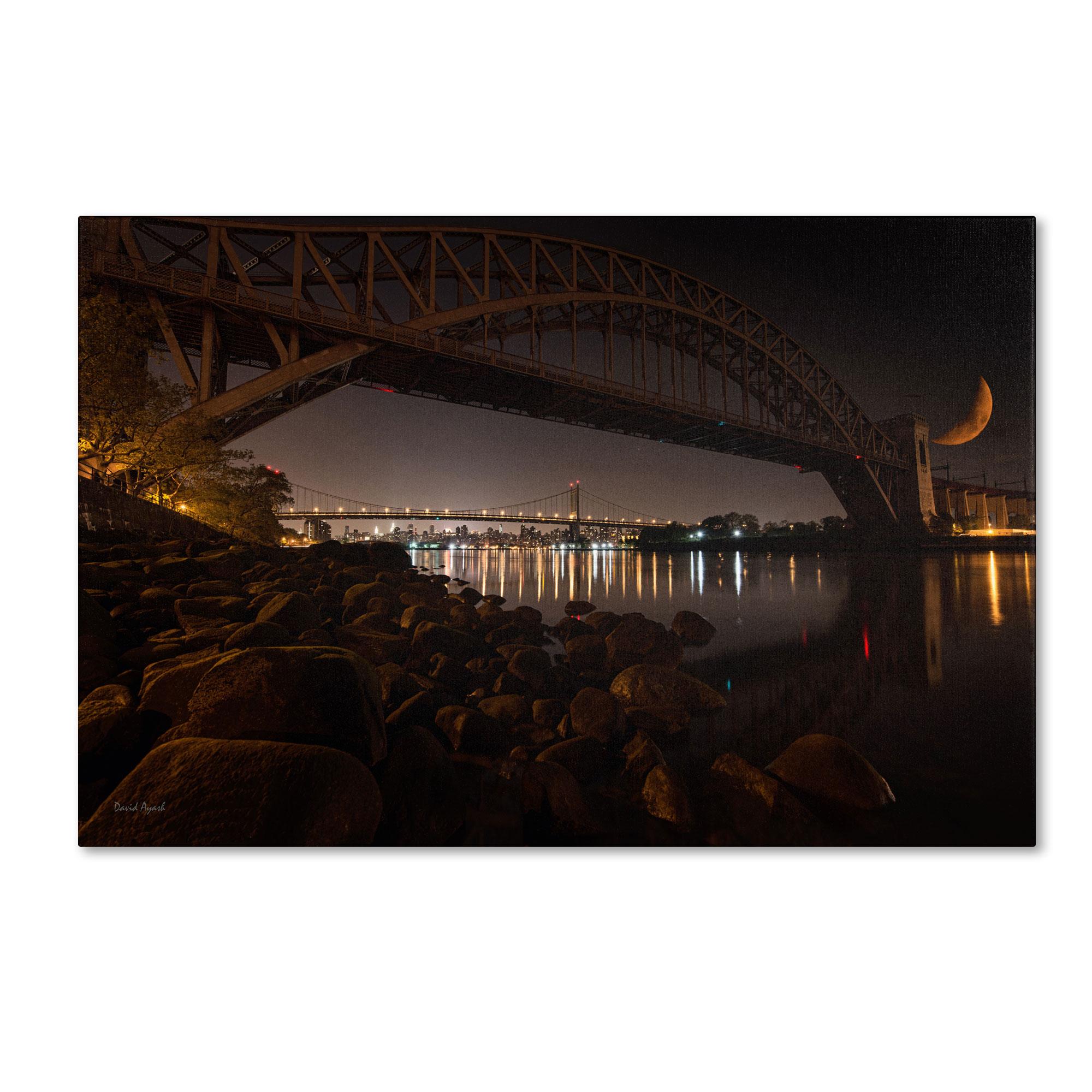 Trademark Global David Ayash 'Hells Gate and RFK Bridge - NYC' Canvas Art PartNumber: 021V002804269000P KsnValue: 2804269 MfgPartNumber: MA0512-C1219GG