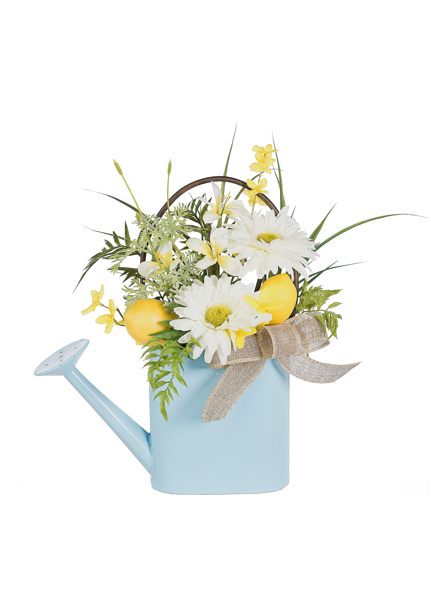 Spring Blue Watering Can with Lemons PartNumber: A015080163 KsnValue: 2654185 MfgPartNumber: NP17067-54