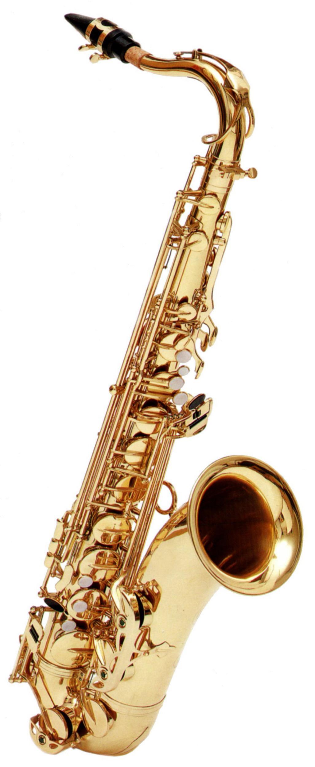 Ravel By Gemeinhardt Gemeinhardt Tenor Sax PartNumber: 05745287000P KsnValue: 05745287000 MfgPartNumber: BTSRGT202