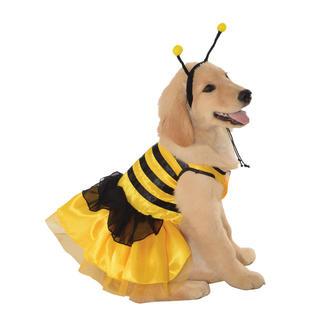 Pet Baby Bumblebee Halloween Costume