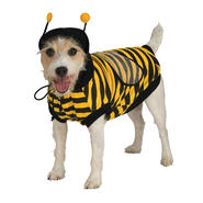 Pet Bumblebee Halloween Costume at Sears.com