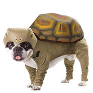 Pet Animal Planet Tortoise Halloween Costume at Sears.com