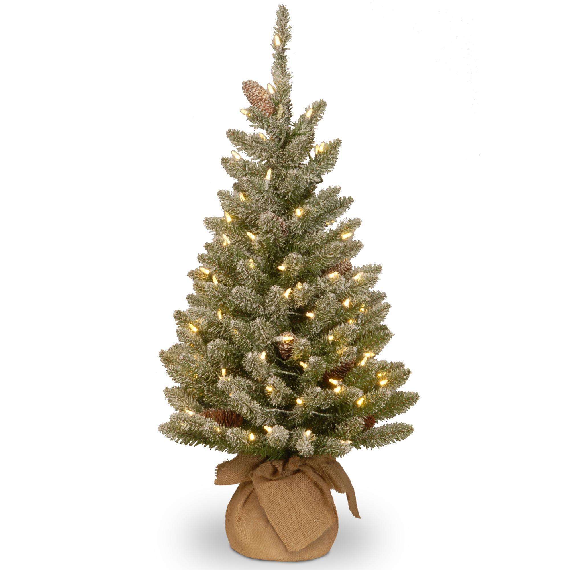 National Tree Company 3 ft. Snowy Concolor Fir Tree with Battery Operated LED Lights