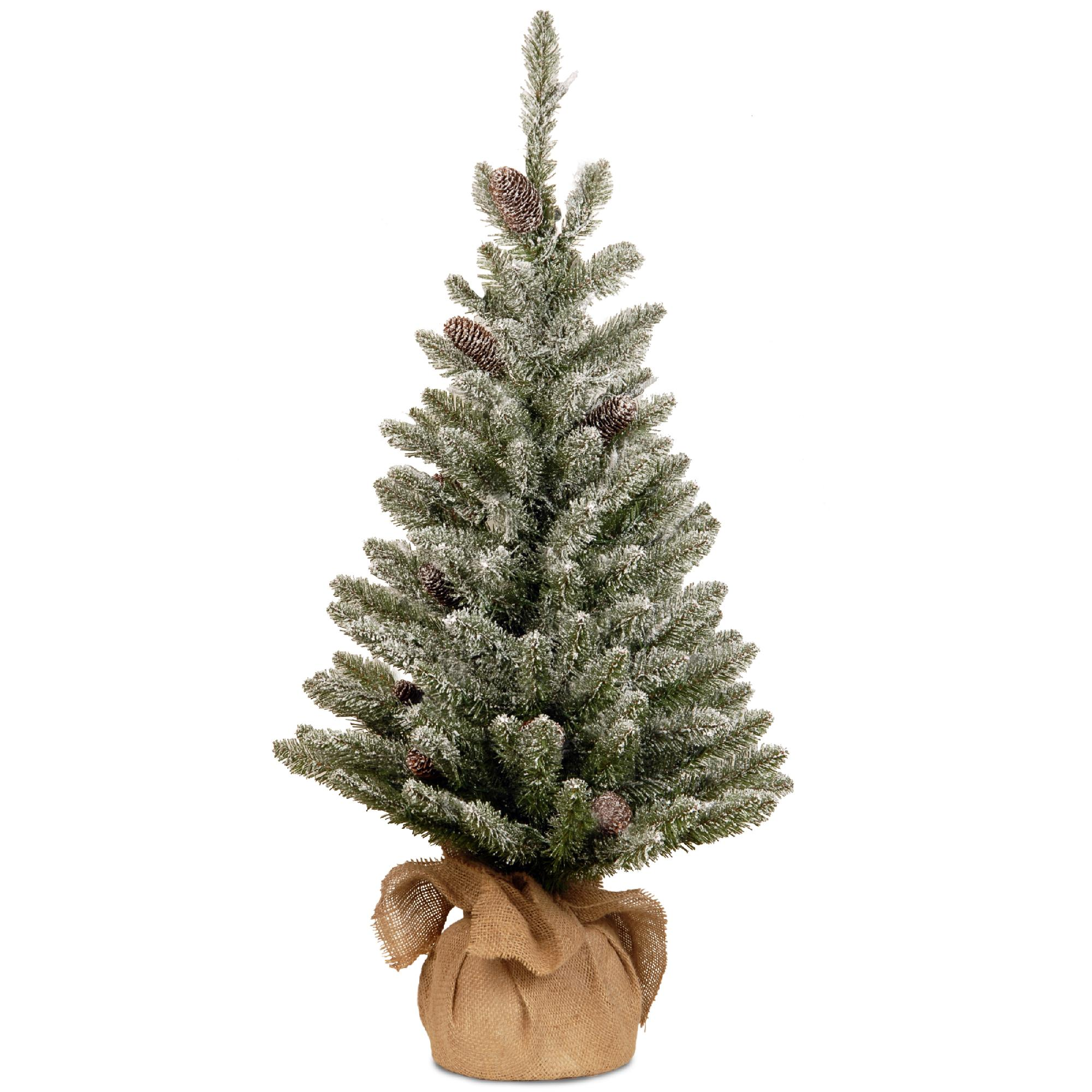National Tree Company 3 ft. Snowy Concolor Fir Tree