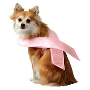 Pink Ribbon Dog Costume Medium at Sears.com