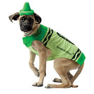 Crayola Green Dog Costume Medium at Sears.com