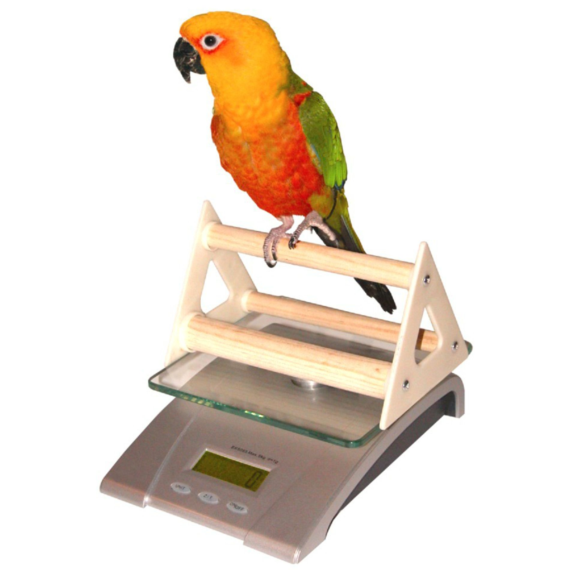 Redmon Digital Bird And Small Animal Scale With Perch