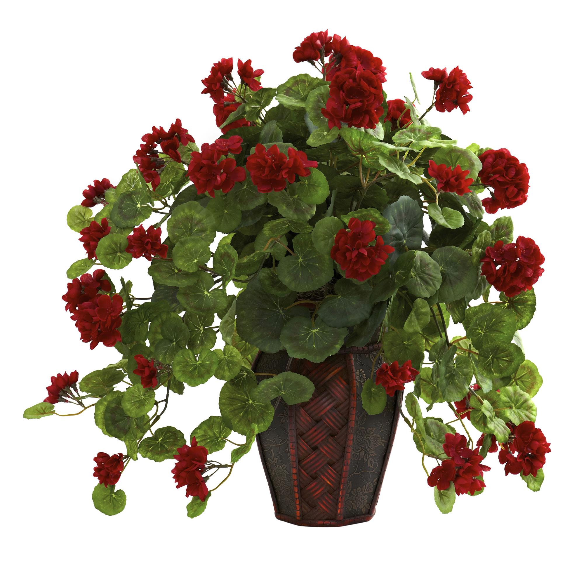 Geranium With Decorative Planter PartNumber: 02473984000P KsnValue: 6089021 MfgPartNumber: 6777