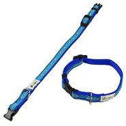 Anima Double Layer Blue Dogs & Bones with Leash - 10 in. at Kmart.com