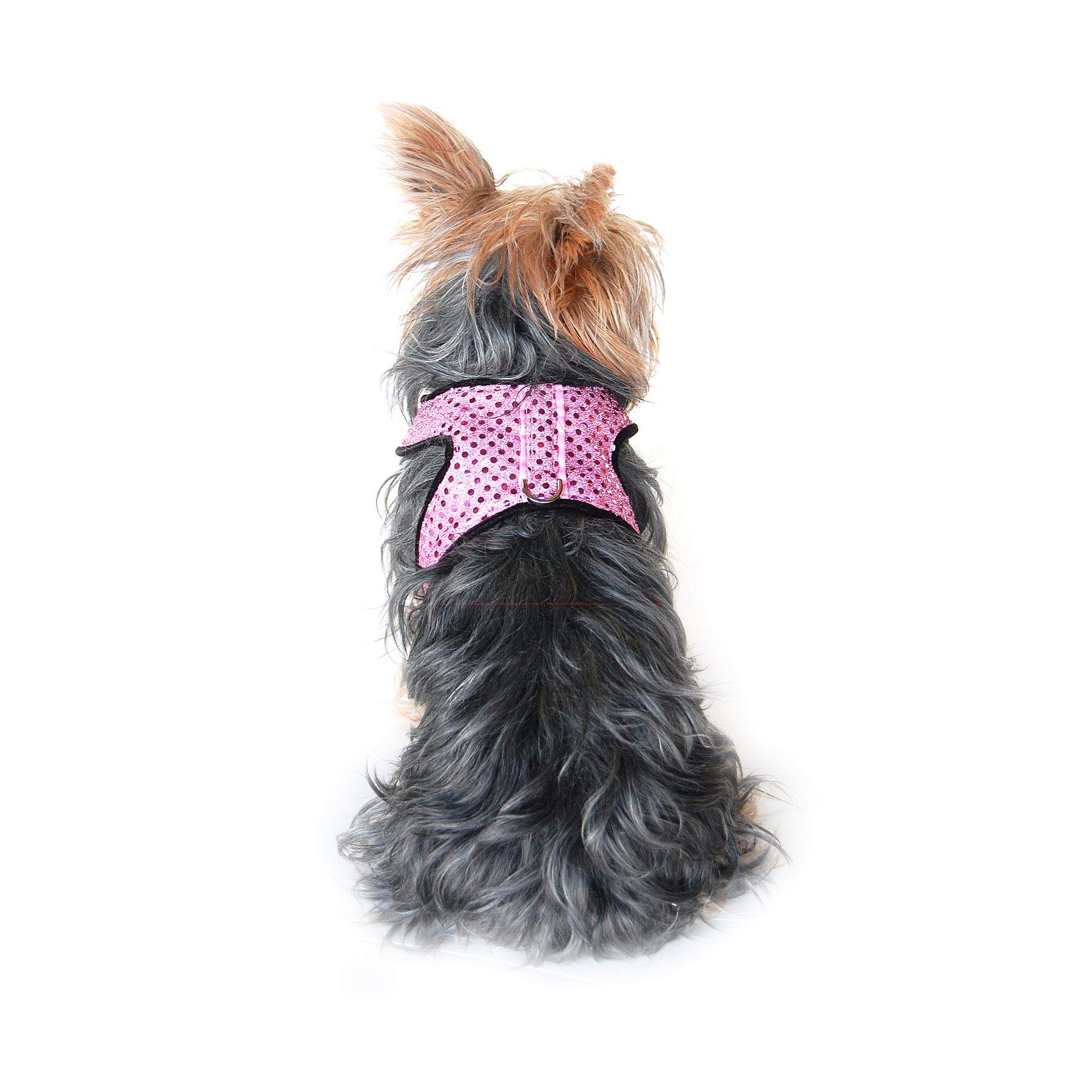 Anima  Extra Small Sparkle Harness with