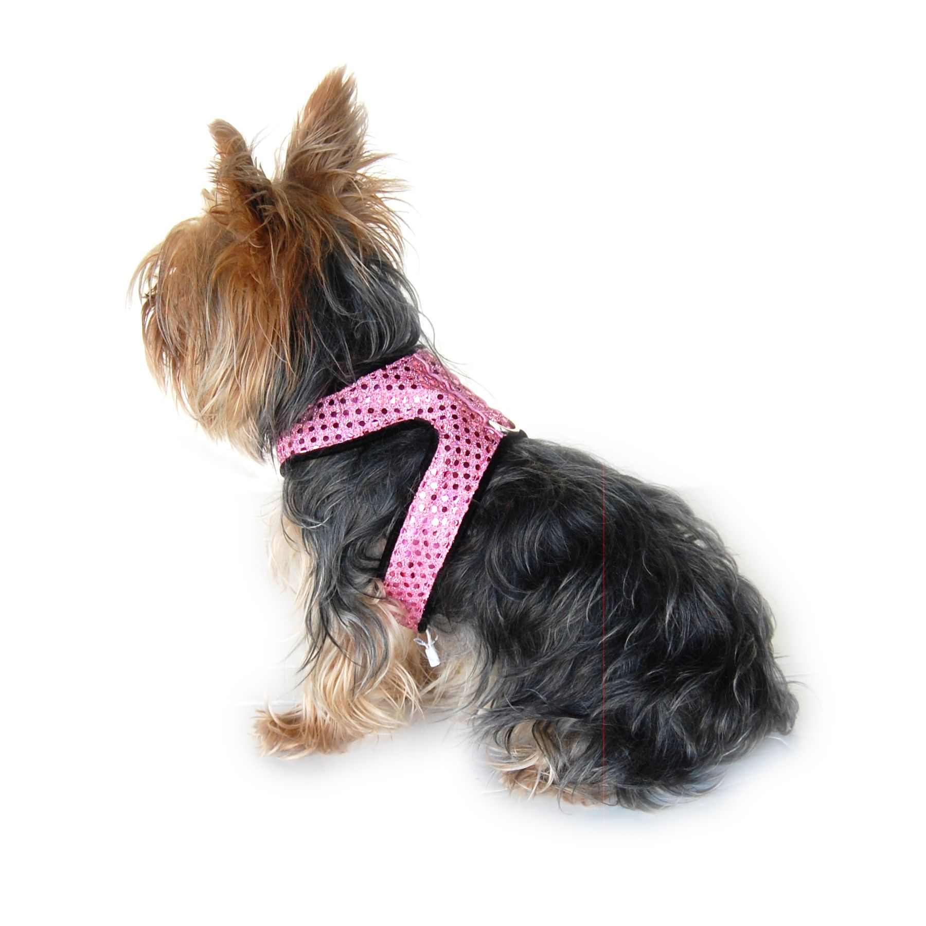 Medium Sparkle Harness with Leash