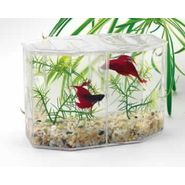 Lee's Aquarium & Pet Products Lee Dual Hex Betta Kit w/Gravel & Plant at Kmart.com