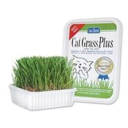 Gimborn Products Gim Treat Grass Plus 5 oz. at Kmart.com
