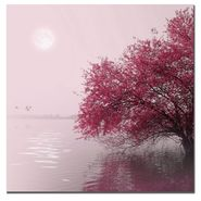 "Trademark Fine Art 24x24 inches ""Full Moon on the Lake"" Philippe Sainte-Laudy at Sears.com"