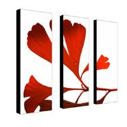 "Trademark Fine Art Three 8x24 inch pieces ""Ginko Drops"" Philippe Sainte-Laudy at Sears.com"