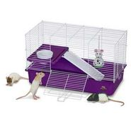 Pets International Ltd. Pts Cage My First Home for Pet Rat at Kmart.com