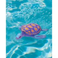 Swimways Rainbow Reef Turtle at Kmart.com