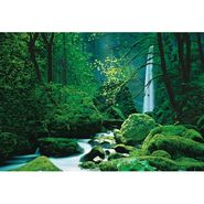 Komar Scenic Black Forest Mural - 8ft. 10in. wide x 6ft. 4in. high at Kmart.com