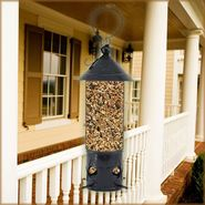 Avant Garden North Star Wild Bird Feeder at Sears.com