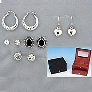 Zebra Technologies 5 pair Earring Assortment with Jewelry Box at Kmart.com