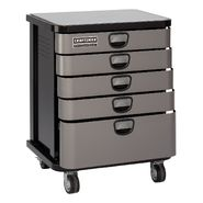 Craftsman Professional 5-Drawer Mobile Cabinet - Platinum at Craftsman.com