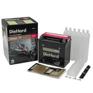 DieHard Gold PowerSport Battery 14-BS (Price with Exchange) at Kmart.com