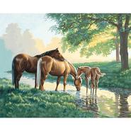 PaintWorks Paint By Number Kit 20 in X 16 in -Horses By A Stream at Kmart.com