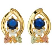 Black Hills Gold Tricolor 10K Sapphire and Diamond Accent Earrings at Kmart.com