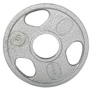 Weider 5 lb. Olympic Handle Hammertone Plate at Sears.com