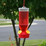 Perky-Pet Hummingbird Feeder 18oz Lantern at Kmart.com