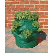 Bosmere Strawberry / Herb Planter Bag at Sears.com