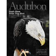 Audubon Magazine at Kmart.com