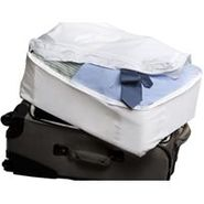 Bedbug Large Luggage Liner