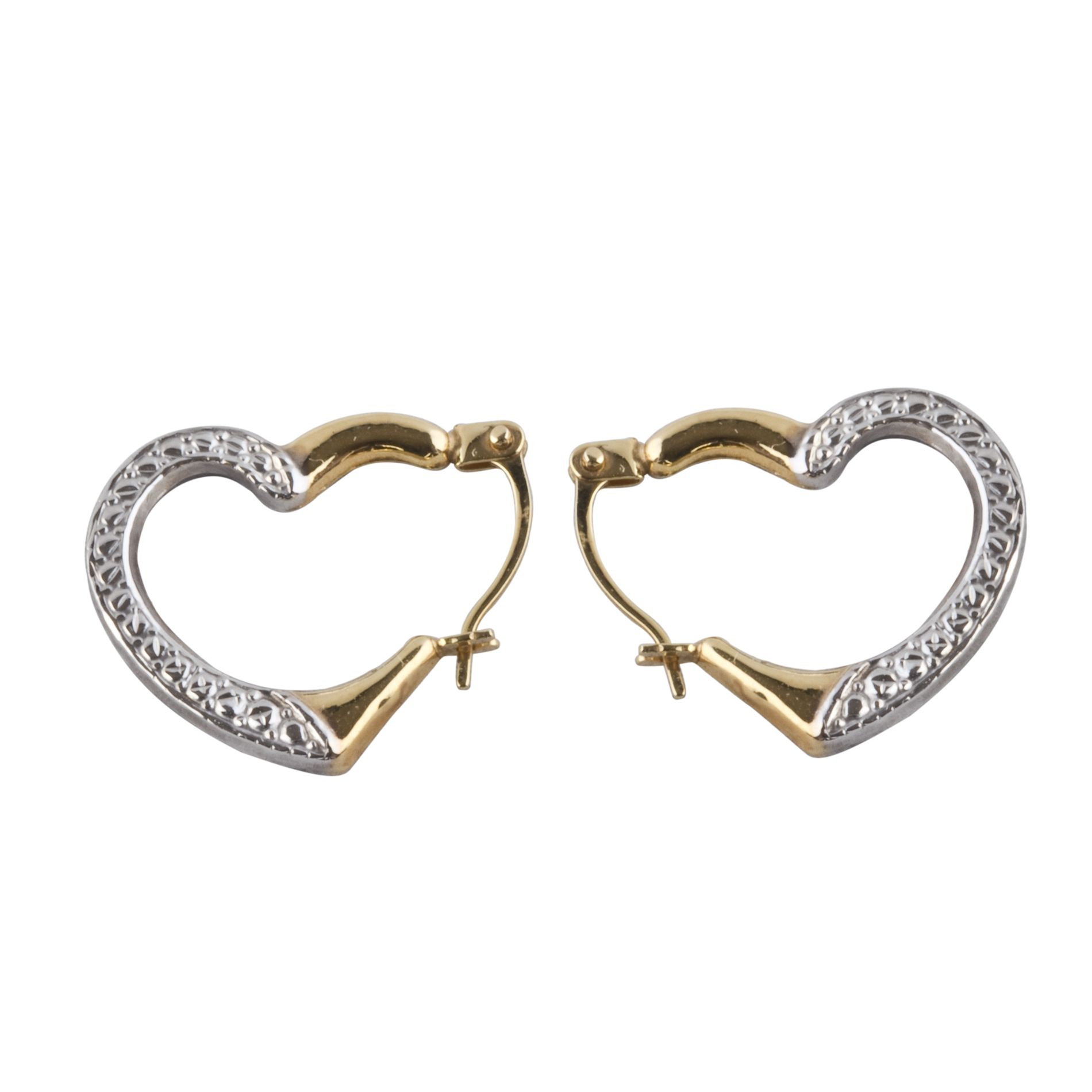 10k Two Tone Gold Earrings                                                                                                       at mygofer.com
