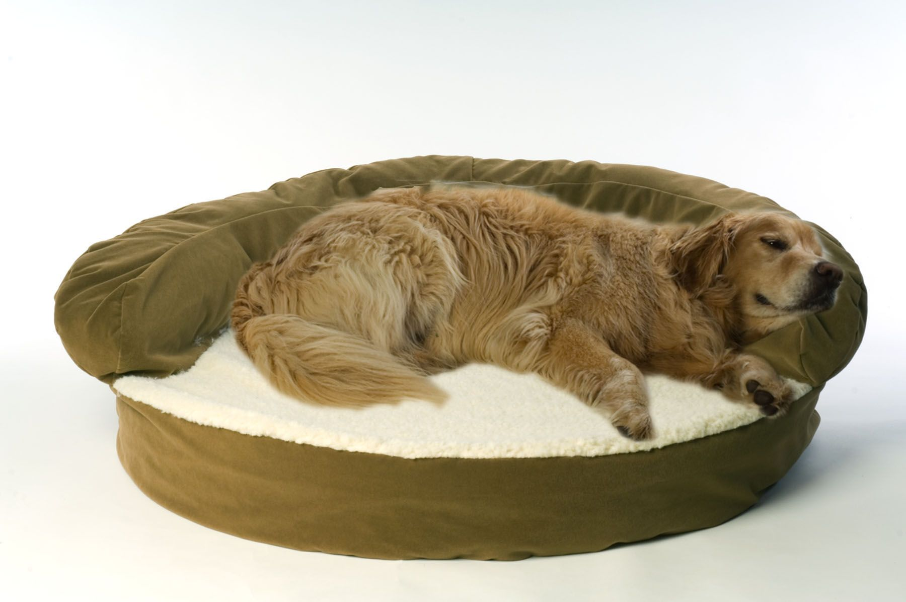 Carolina Pet Medium Ortho Sleeper Bolster Bed - Sage