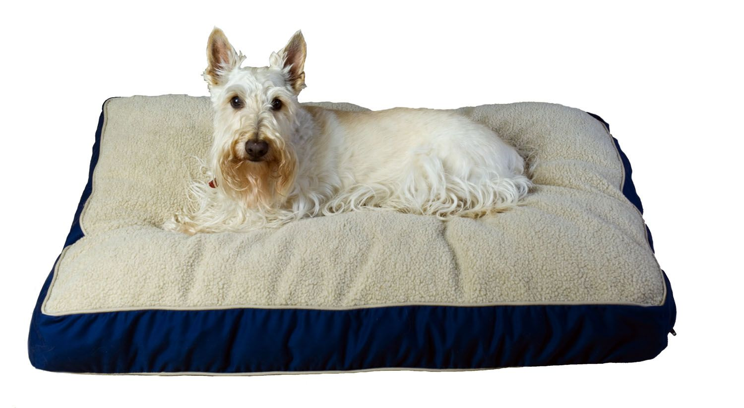 "Carolina Pet Medium Four Season ""Jamison"" Bed - Blue w/Khaki Cording"