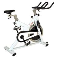 Sunny Health&Fitness SF-B1110 Indoor Cycling Bike at Kmart.com