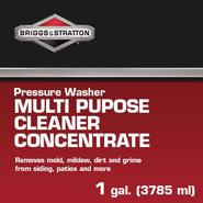 Briggs & Stratton Multi-Purpose Wash Concentrate (1 gal.) at Craftsman.com