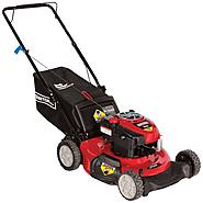 Craftsman 190cc* Briggs & Stratton Engine, Low-Wheel Rear Bag Push Mower 50 States at Sears.com