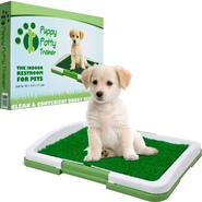 PAW Puppy Potty Trainer - The Indoor Restroom for Pets at Kmart.com