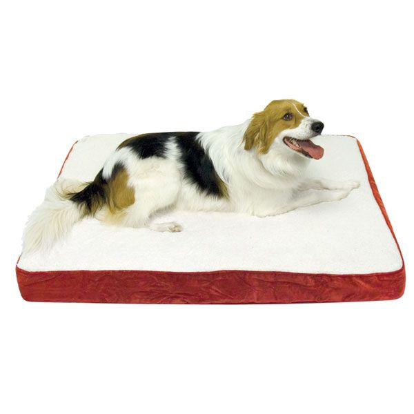 Oscar Orthopedic Dog Bed - Small (24 x 36in.)