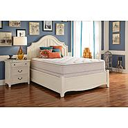 Sealy Plush Euro Pillowtop Twin Extra Long Mattress Glen Abbey Select II at Sears.com