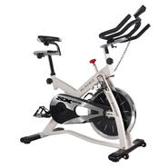 Bladez SXPro Exercise Bike at Kmart.com