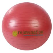 Rejuvenation Complete Support & Stability Balls - 55CM at Kmart.com